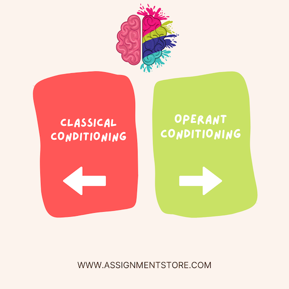 Explain the Similarities and Differences between Classical Conditioning and Operant Conditioning